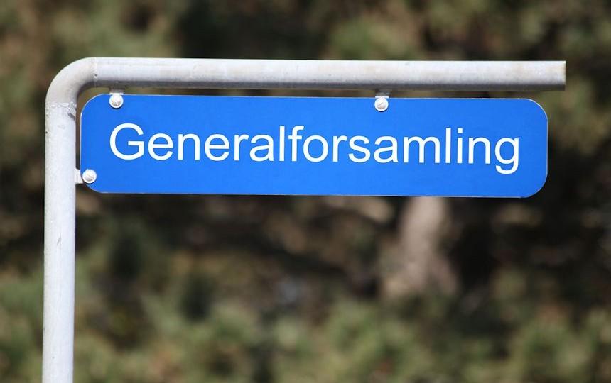 Generalforsamling i Landsbyhuset