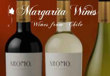 Vinsmagning – Fantastiske vine fra Chile